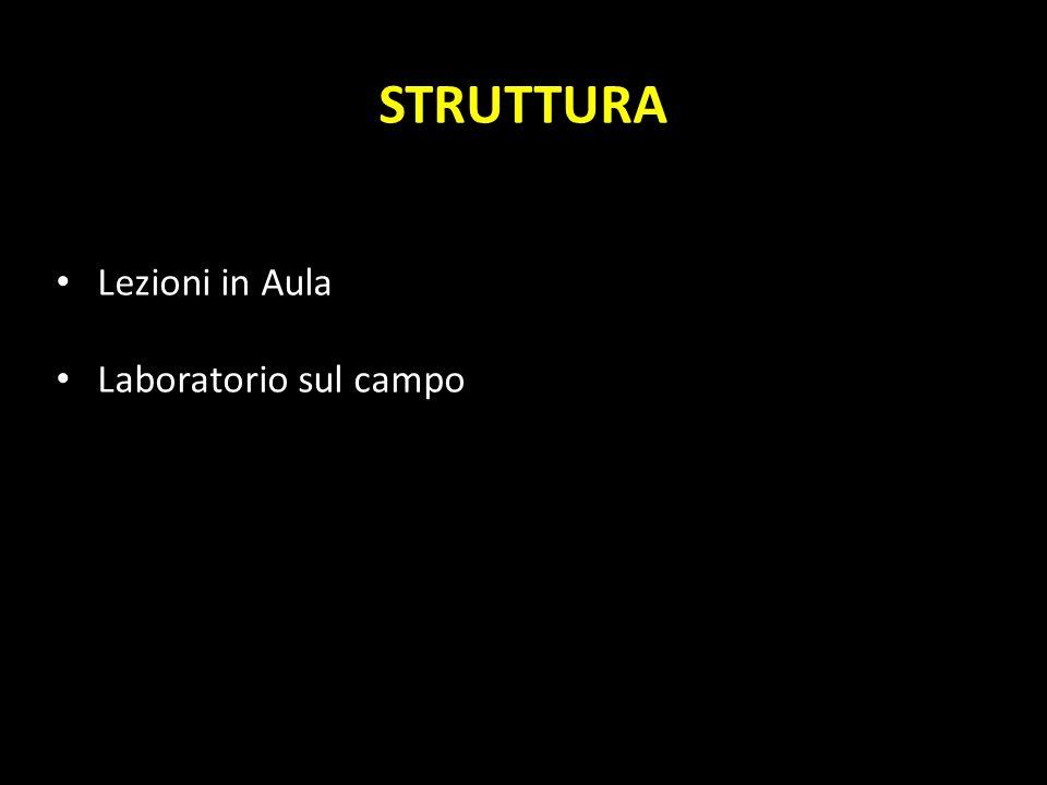 AUSILI DIDATTICI Appunti e ppt delle lezioni (http://www.geoscienze.unipd.it/personal/capraro-luca) Testi: A.