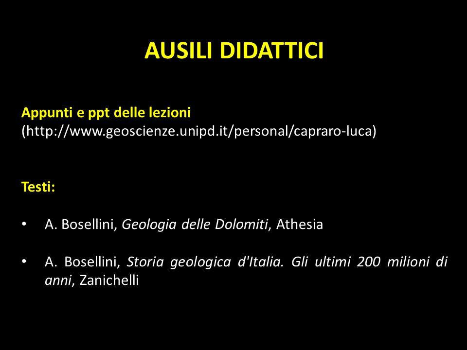AUSILI DIDATTICI Appunti e ppt delle lezioni (http://www.geoscienze.unipd.it/personal/capraro-luca) Testi: A. Bosellini, Geologia delle Dolomiti, Athe