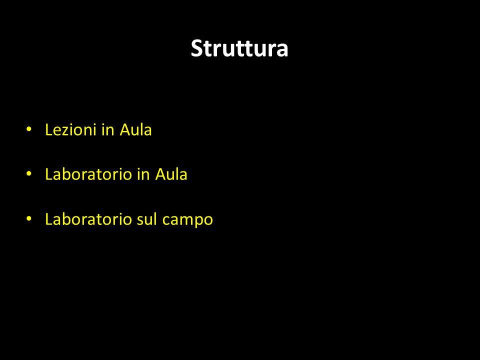 AUSILI DIDATTICI: Appunti e ppt delle lezioni (http://www.geoscienze.unipd.it/personal/capraro-luca) Testi: A.