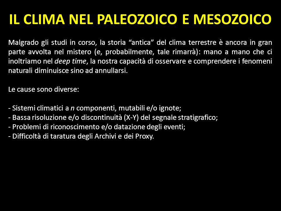 IL CLIMA NEL PALEOZOICO E MESOZOICO Malgrado gli studi in corso, la storia antica del clima terrestre è ancora in gran parte avvolta nel mistero (e, p