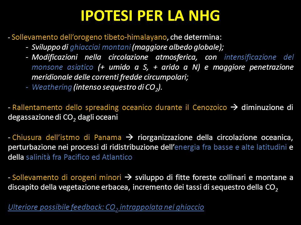 IPOTESI PER LA NHG - Sollevamento dellorogeno tibeto-himalayano, che determina: -Sviluppo di ghiacciai montani (maggiore albedo globale); -Modificazio