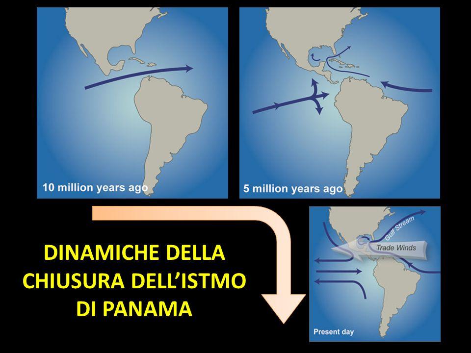 DINAMICHE DELLA CHIUSURA DELLISTMO DI PANAMA