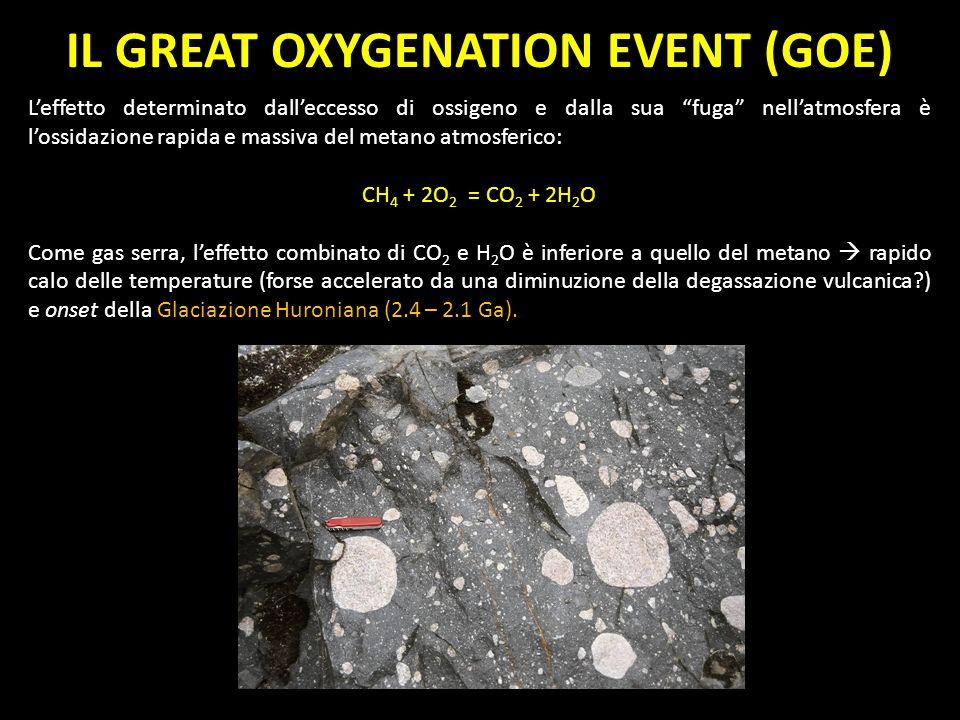IL GREAT OXYGENATION EVENT (GOE) Leffetto determinato dalleccesso di ossigeno e dalla sua fuga nellatmosfera è lossidazione rapida e massiva del metan