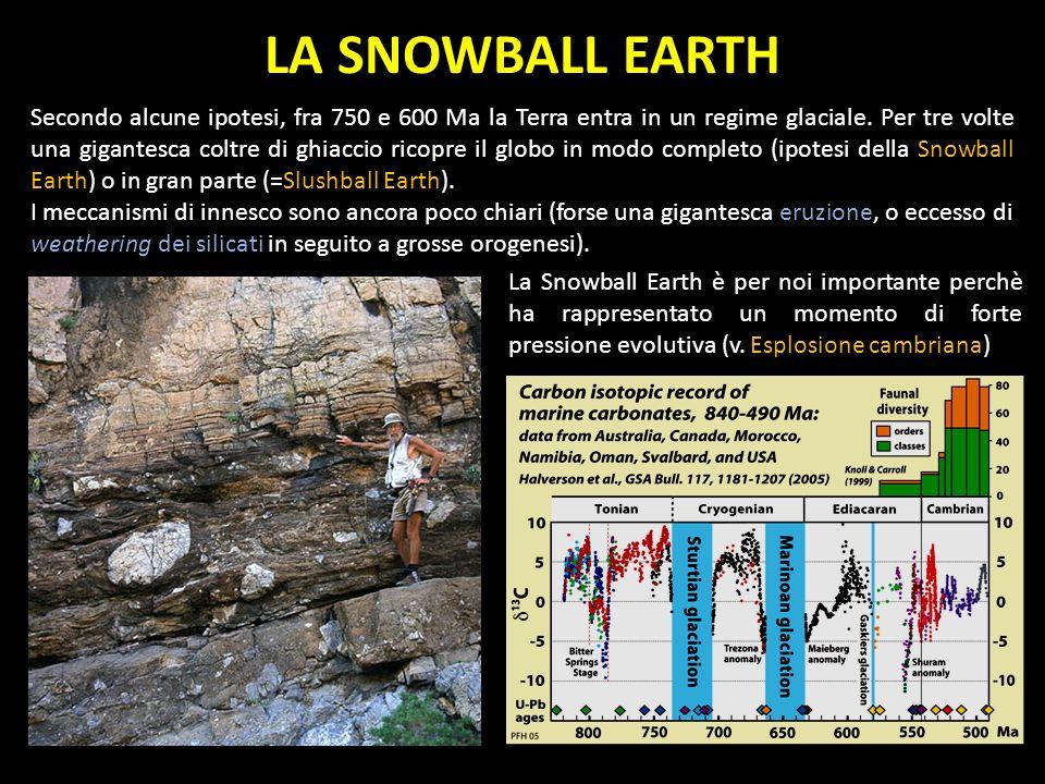 LA SNOWBALL EARTH Secondo alcune ipotesi, fra 750 e 600 Ma la Terra entra in un regime glaciale. Per tre volte una gigantesca coltre di ghiaccio ricop