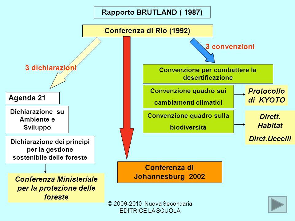 Rapporto BRUTLAND ( 1987) Conferenza di Rio (1992) Agenda 21 Dichiarazione su Ambiente e Sviluppo Dichiarazione dei principi per la gestione sostenibile delle foreste Convenzione per combattere la desertificazione Conferenza di Johannesburg 2002 3 dichiarazioni 3 convenzioni Conferenza Ministeriale per la protezione delle foreste Convenzione quadro sui cambiamenti climatici Convenzione quadro sulla biodiversità Protocollo di KYOTO Dirett.