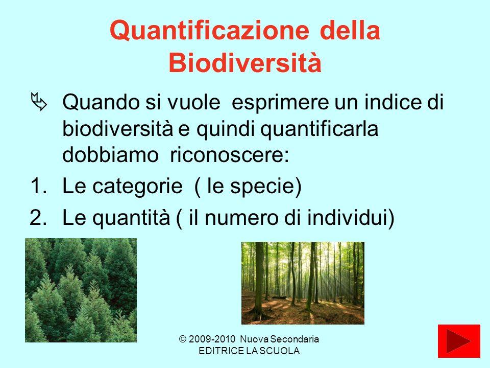 Quantificazione della Biodiversità Quando si vuole esprimere un indice di biodiversità e quindi quantificarla dobbiamo riconoscere: 1.Le categorie ( le specie) 2.Le quantità ( il numero di individui) © 2009-2010 Nuova Secondaria EDITRICE LA SCUOLA