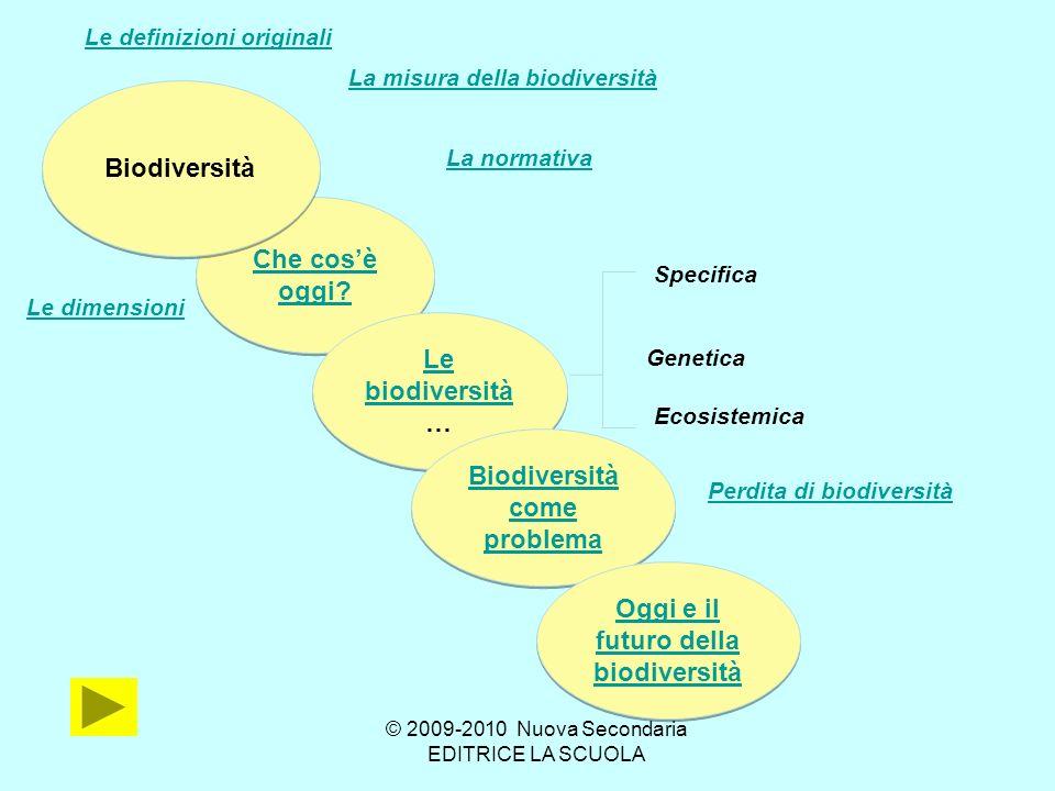 Biodiversita ETICA Patrimonio culturale dellumanità Valore di esistenza ECONOMICA Risorse biologiche e loro utilizzo Biologica ECOLOGICA Ruolo e funzionamento degli ecosistemi Le dimensioni …………….