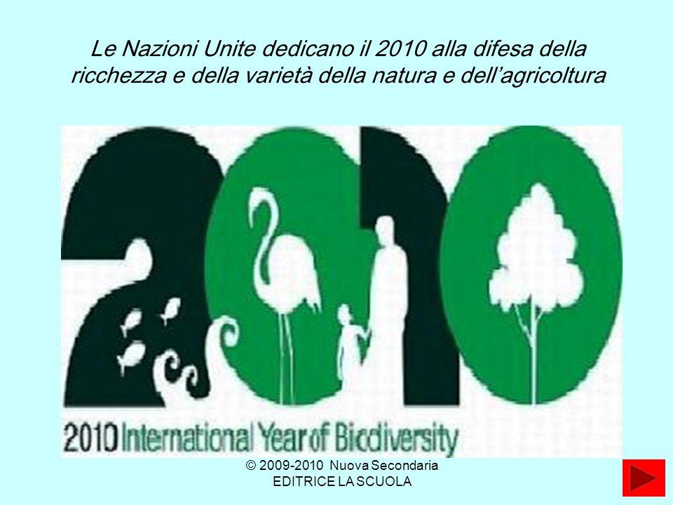 Le Nazioni Unite dedicano il 2010 alla difesa della ricchezza e della varietà della natura e dellagricoltura © 2009-2010 Nuova Secondaria EDITRICE LA SCUOLA