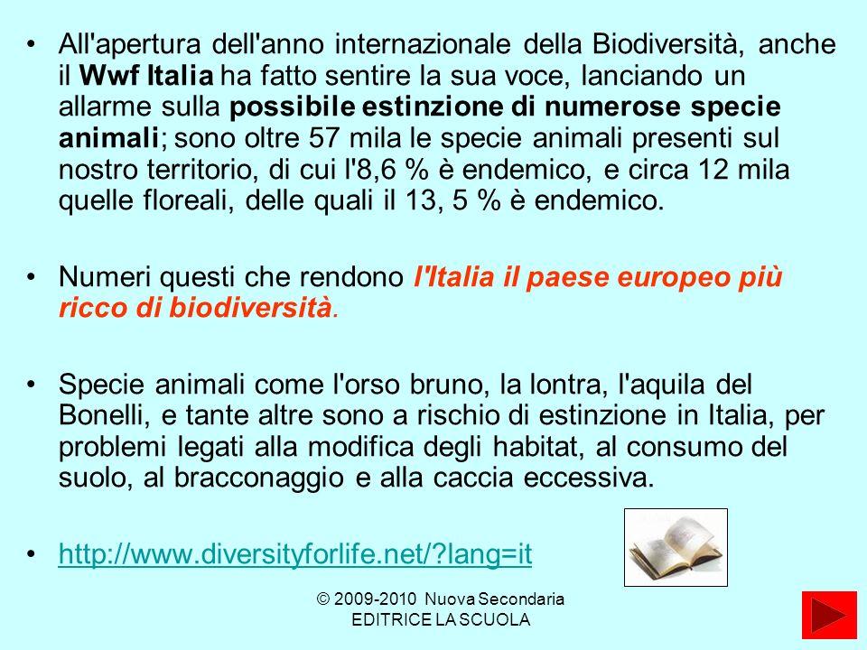 All apertura dell anno internazionale della Biodiversità, anche il Wwf Italia ha fatto sentire la sua voce, lanciando un allarme sulla possibile estinzione di numerose specie animali; sono oltre 57 mila le specie animali presenti sul nostro territorio, di cui l 8,6 % è endemico, e circa 12 mila quelle floreali, delle quali il 13, 5 % è endemico.