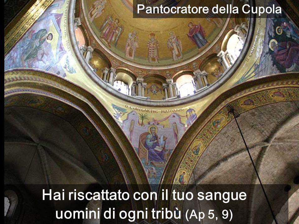 Hai riscattato con il tuo sangue uomini di ogni tribù (Ap 5, 9) Pantocratore della Cupola