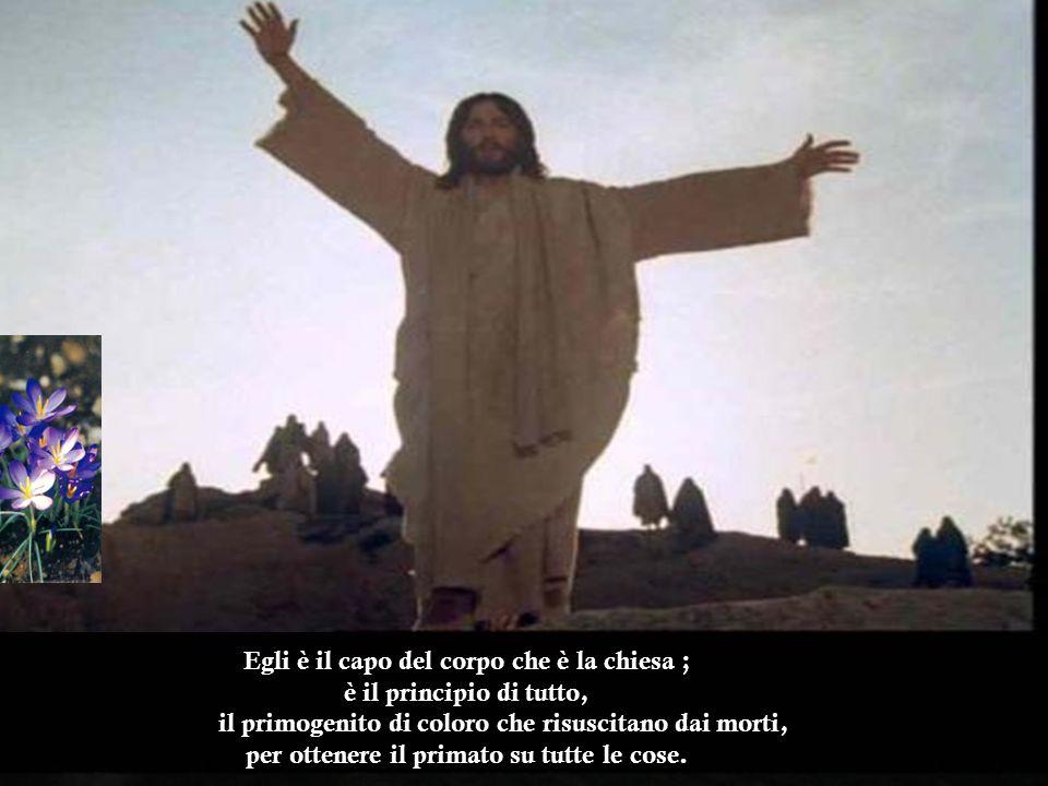 T utte le cose sono state create per mezzo di lui e in vista di lui: quelle nei cieli e quelle sulla terra, quelle visibili e quelle invisibili.