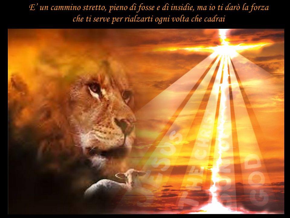 Io sono tuo Padre e tu sei mio figlio e se segui Gesù ovunque ti condurrà troverai Me, perché chi ha visto Lui ha visto Me.