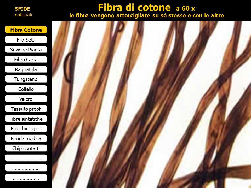Fibra Cotone Filo Seta Sezione Pianta Fibra Carta Ragnatela Tungsteno Coltello Velcro Tessuto proof Fibre sintetiche Filo chirurgico Benda medica Chip contatti ………………… ………………..