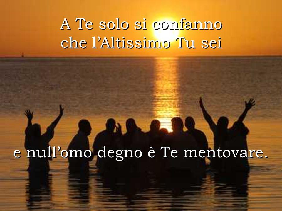 A te solo Buon Signore si confanno gloria e onore, A te solo Buon Signore si confanno gloria e onore, a Te ogni laude et benedizione.