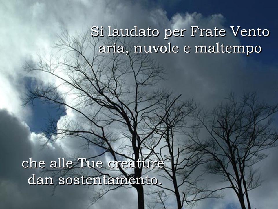 Si laudato per Frate Vento aria, nuvole e maltempo Si laudato per Frate Vento aria, nuvole e maltempo che alle Tue creature dan sostentamento.