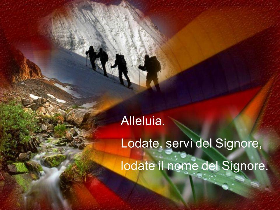 Grandezza divina Salmo 113(112) modif. Sr.Caterina fsp (Testo Cei) CRISTO RE/dom.3 set./trasf.6 ag./1 nov./Comune:B.V.M.- Past.Dot.xsa-Vergini-Santi-S