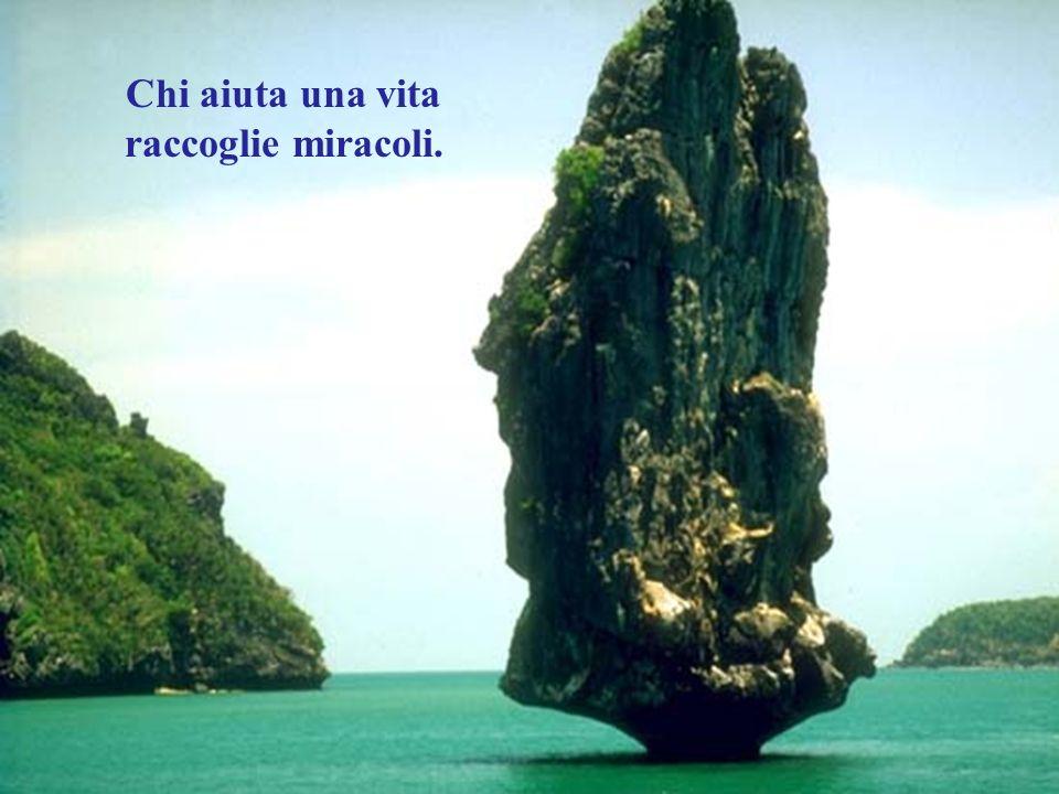 Chi aiuta una vita raccoglie miracoli.