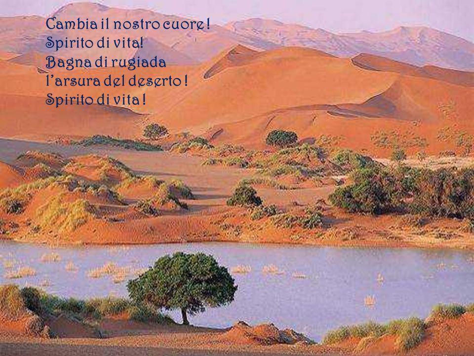 Cambia il nostro cuore ! Spirito di vita! Bagna di rugiada larsura del deserto ! Spirito di vita !