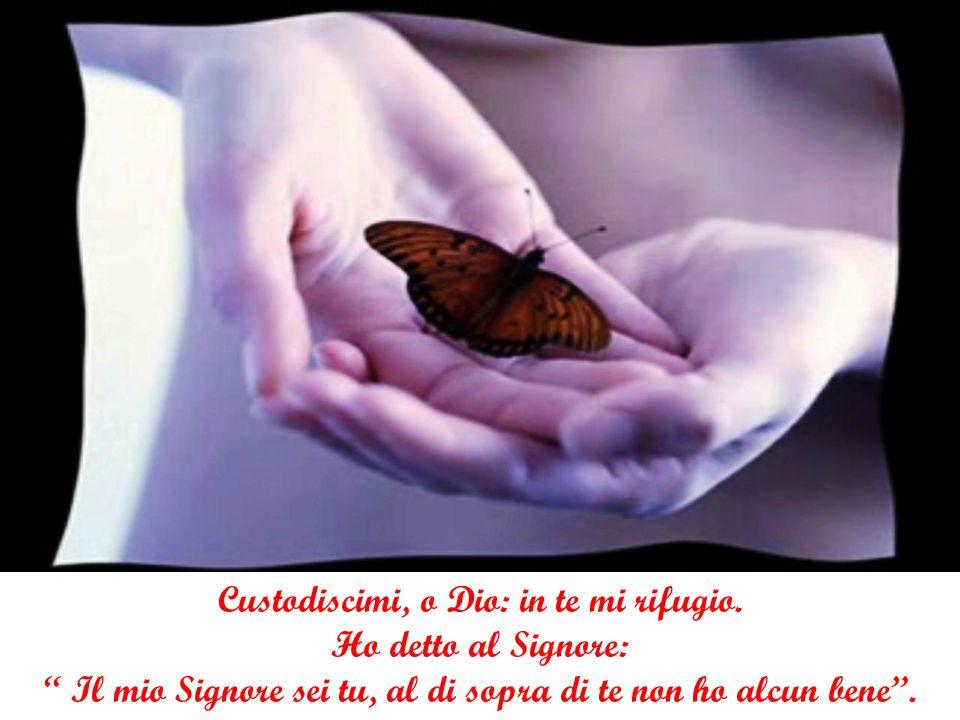 Custodiscimi, o Dio: in te mi rifugio.