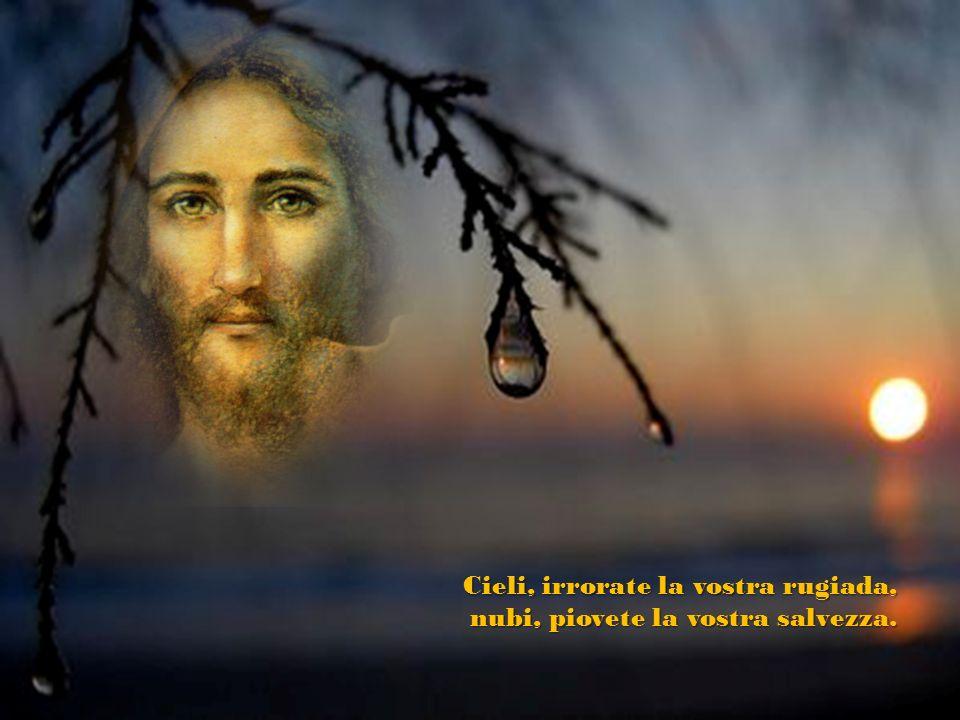 Non adirarti più a lungo, Signore, non ricordare ancora le colpe, or la città dei tuoi santi è deserta, Sion è tutto un triste deserto!
