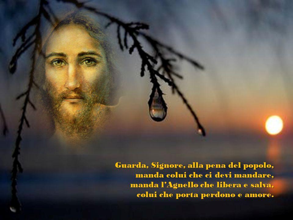 Guarda, Signore, alla pena del popolo, manda colui che ci devi mandare, manda lAgnello che libera e salva, colui che porta perdono e amore.