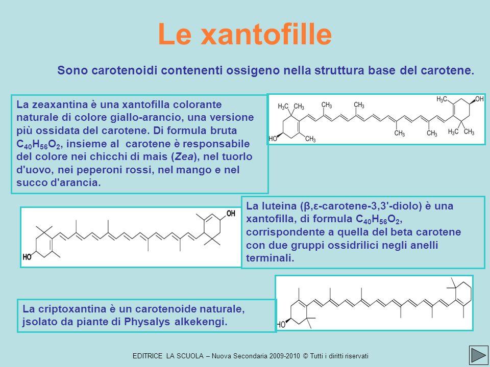 EDITRICE LA SCUOLA – Nuova Secondaria 2009-2010 © Tutti i diritti riservati Le xantofille La luteina (β,ε-carotene-3,3 -diolo) è una xantofilla, di formula C 40 H 56 O 2, corrispondente a quella del beta carotene con due gruppi ossidrilici negli anelli terminali.