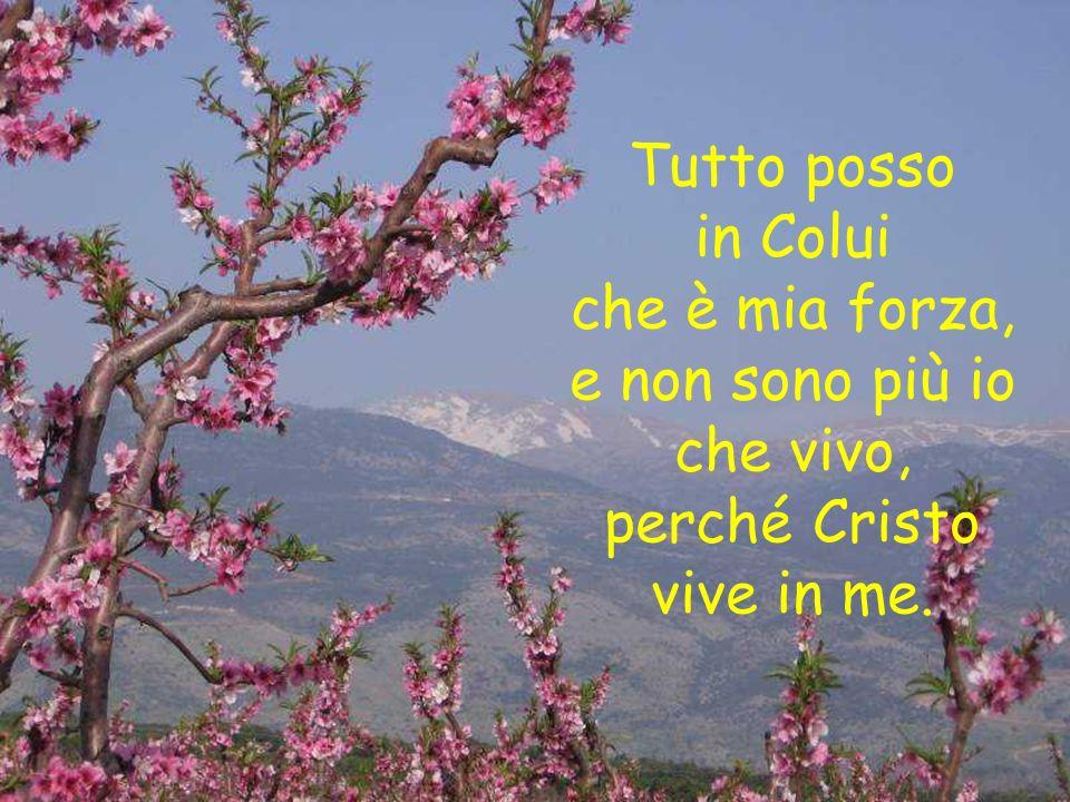 Rendo lode a Dio Padre, che in Cristo ci ha chiamati allannuncio del vangelo di salvezza.