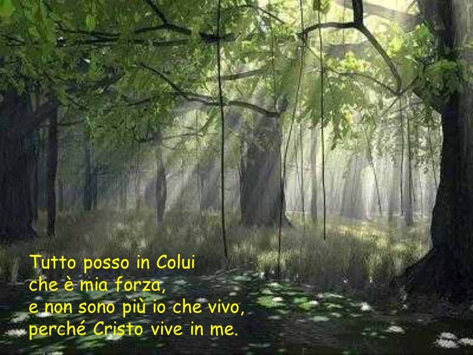 Tutto posso in Colui che è mia forza, e non sono più io che vivo, perché Cristo vive in me.