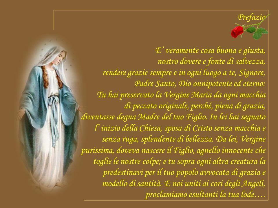 Allora Maria disse all angelo: Come è possibile ? Non conosco uomo. Le rispose l angelo: Lo Spirito Santo scenderà su di te, su te stenderà la sua omb
