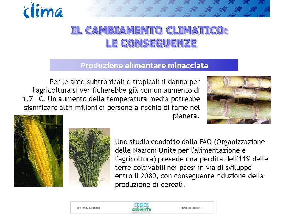 Produzione alimentare minacciata Per le aree subtropicali e tropicali il danno per l'agricoltura si verificherebbe già con un aumento di 1,7 °C. Un au