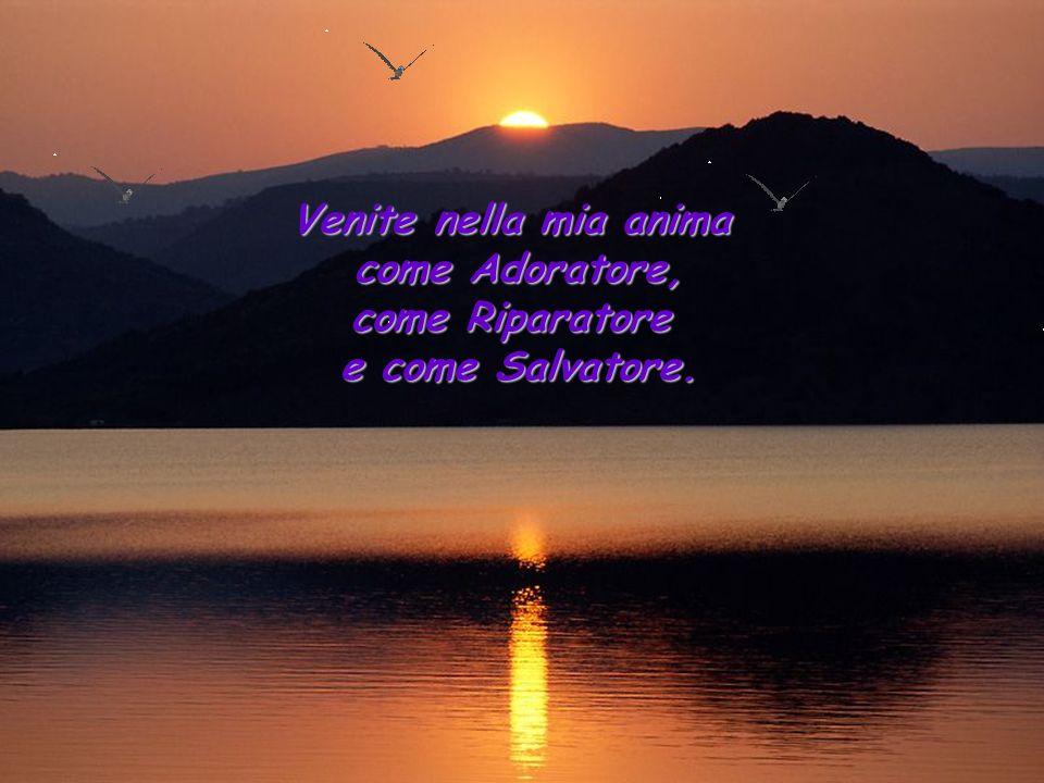 Venite nella mia anima come Adoratore, come Riparatore e come Salvatore.