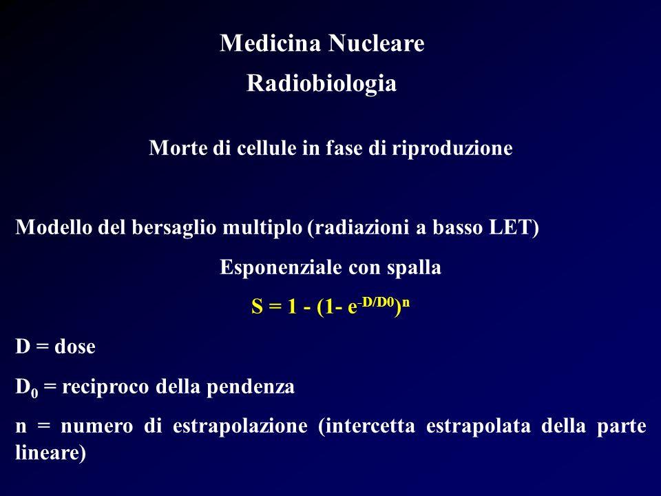 Medicina Nucleare Radiobiologia Morte di cellule in fase di riproduzione Modello del bersaglio multiplo (radiazioni a basso LET) Esponenziale con spal