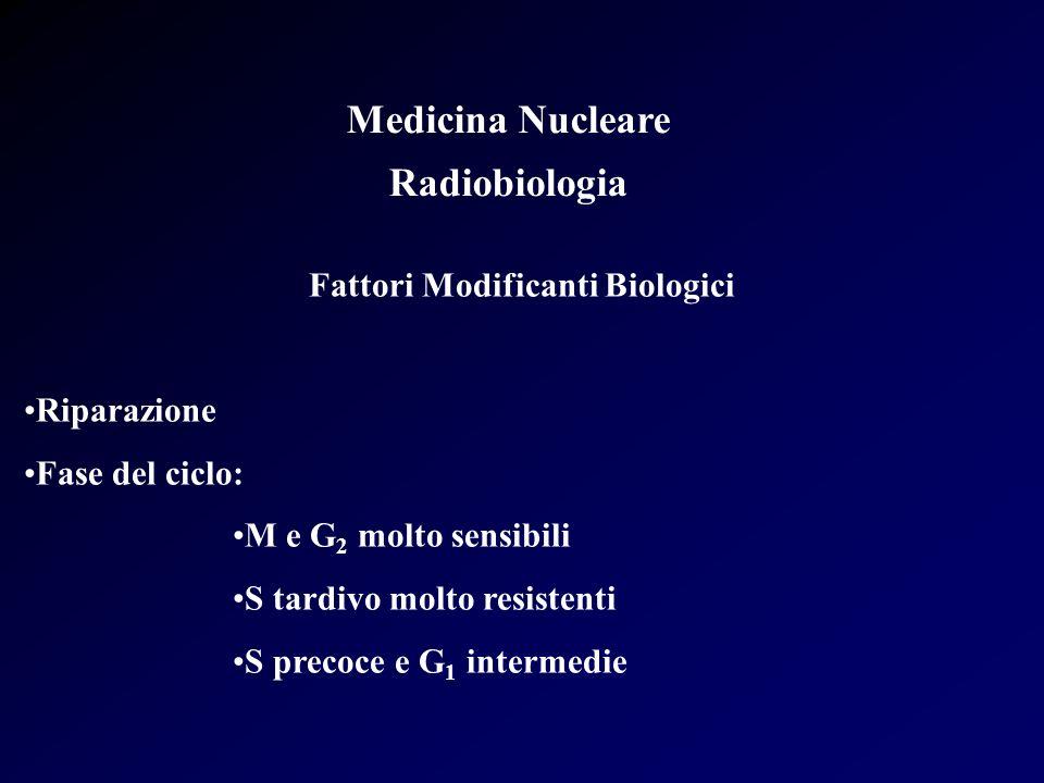 Medicina Nucleare Radiobiologia Fattori Modificanti Biologici Riparazione Fase del ciclo: M e G 2 molto sensibili S tardivo molto resistenti S precoce
