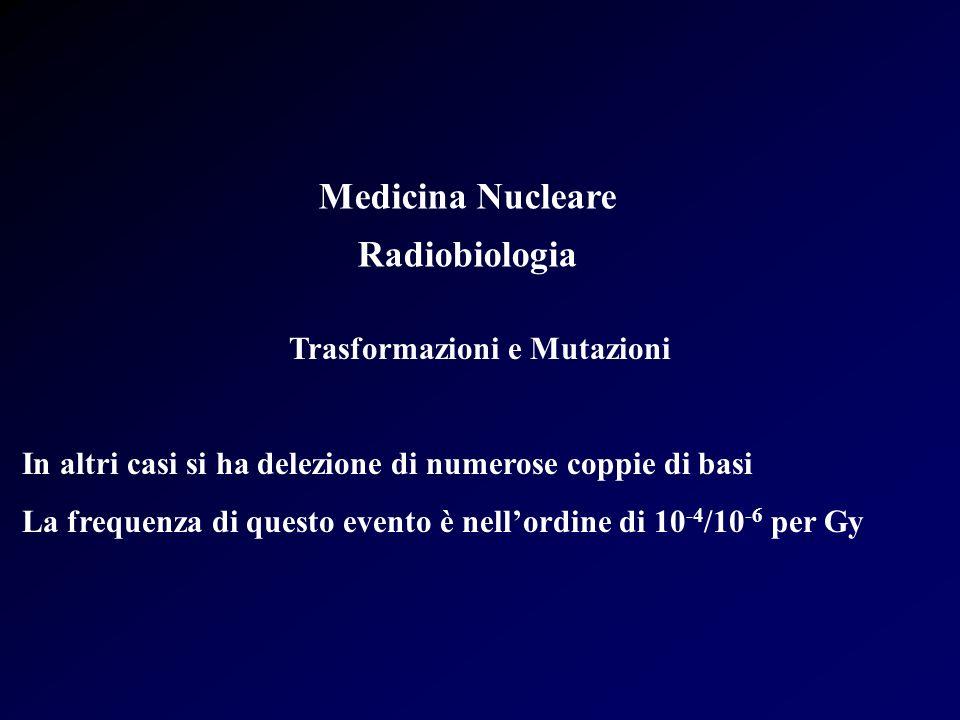 Medicina Nucleare Radiobiologia Effetti Stocastici: Cancro Rischio di Ca mammella maggiore in donne irradiate (fluoroscopia del torace) prima dei 20 anni e legato a stato ormonale Ca polmone in lavoratori miniere di uranio Rischio relativo di Ca dello stomaco di 3.7cin pazienti irradiati per ulcera peptica (1937-1955) Rischio relativo di Ca tiroideo di 1.27 per pazienti trattati con I-131 con dosi di 0.5 Gy