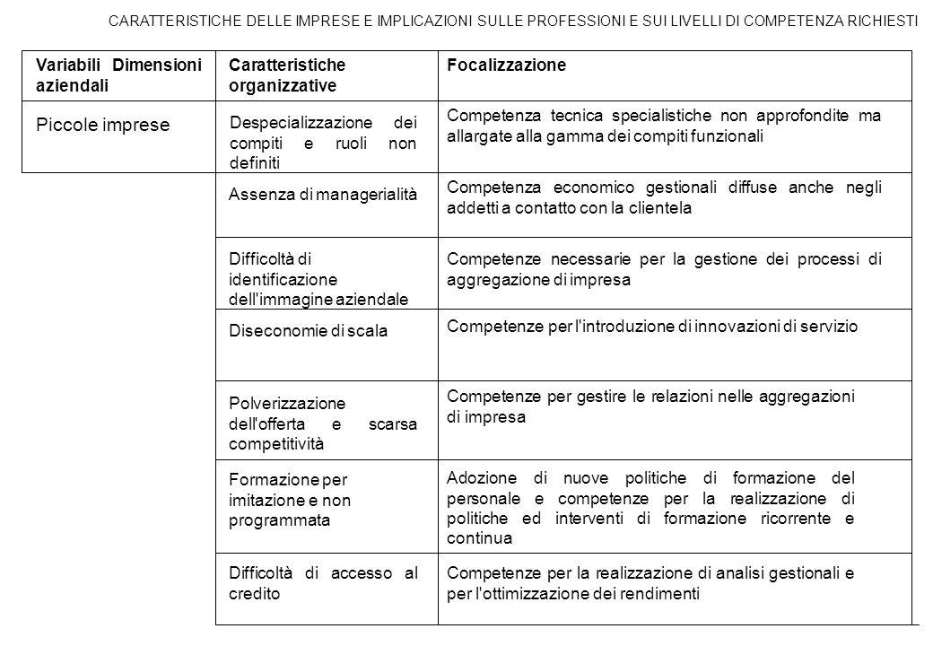 CARATTERISTICHE DELLE IMPRESE E IMPLICAZIONI SULLE PROFESSIONI E SUI LIVELLI DI COMPETENZA RICHIESTI Variabili Dimensioni aziendali Caratteristiche or