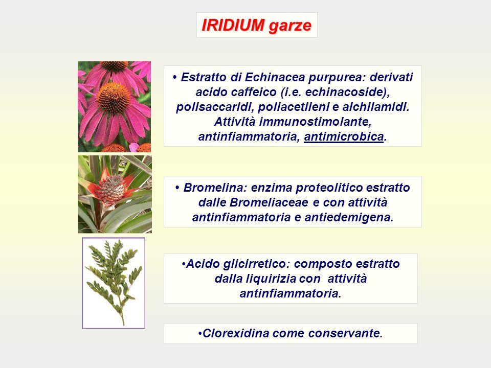 IRIDIUM garze Estratto di Echinacea purpurea: derivati acido caffeico (i.e. echinacoside), polisaccaridi, poliacetileni e alchilamidi. Attività immuno