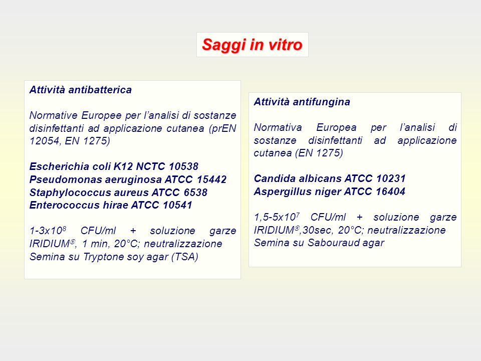 Attività antibatterica Normative Europee per lanalisi di sostanze disinfettanti ad applicazione cutanea (prEN 12054, EN 1275) Escherichia coli K12 NCTC 10538 Pseudomonas aeruginosa ATCC 15442 Staphylococcus aureus ATCC 6538 Enterococcus hirae ATCC 10541 1-3x10 8 CFU/ml + soluzione garze IRIDIUM, 1 min, 20°C; neutralizzazione Semina su Tryptone soy agar (TSA) Saggi in vitro Attività antifungina Normativa Europea per lanalisi di sostanze disinfettanti ad applicazione cutanea (EN 1275) Candida albicans ATCC 10231 Aspergillus niger ATCC 16404 1,5-5x10 7 CFU/ml + soluzione garze IRIDIUM,30sec, 20°C; neutralizzazione Semina su Sabouraud agar