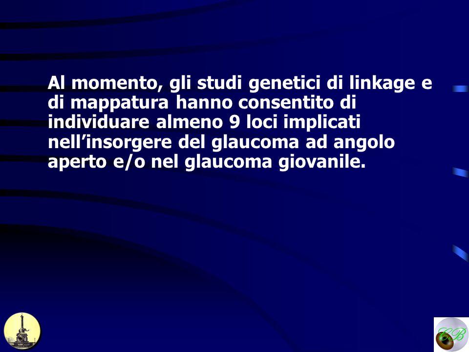 Al momento, gli studi genetici di linkage e di mappatura hanno consentito di individuare almeno 9 loci implicati nellinsorgere del glaucoma ad angolo