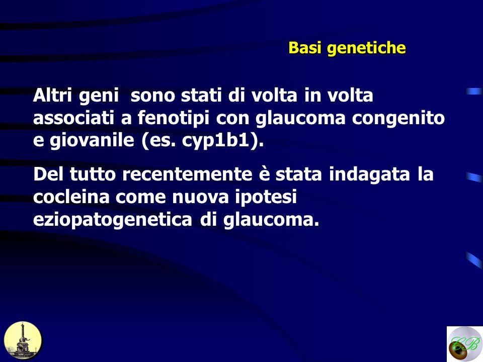Basi genetiche Altri geni sono stati di volta in volta associati a fenotipi con glaucoma congenito e giovanile (es. cyp1b1). Del tutto recentemente è