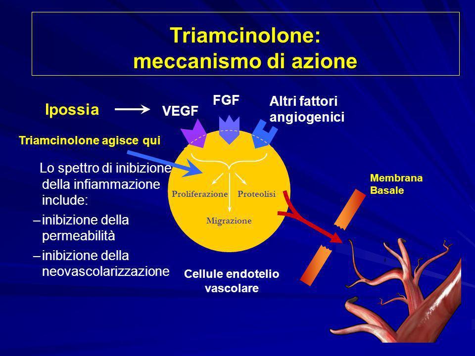 Proliferazione Migrazione Proteolisi VEGF FGF Altri fattori angiogenici Cellule endotelio vascolare Triamcinolone agisce qui Ipossia Membrana Basale L