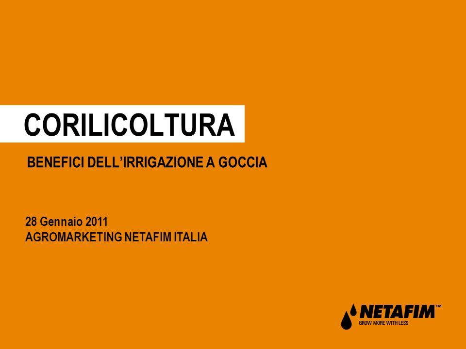 CORILICOLTURA BENEFICI DELLIRRIGAZIONE A GOCCIA 28 Gennaio 2011 AGROMARKETING NETAFIM ITALIA