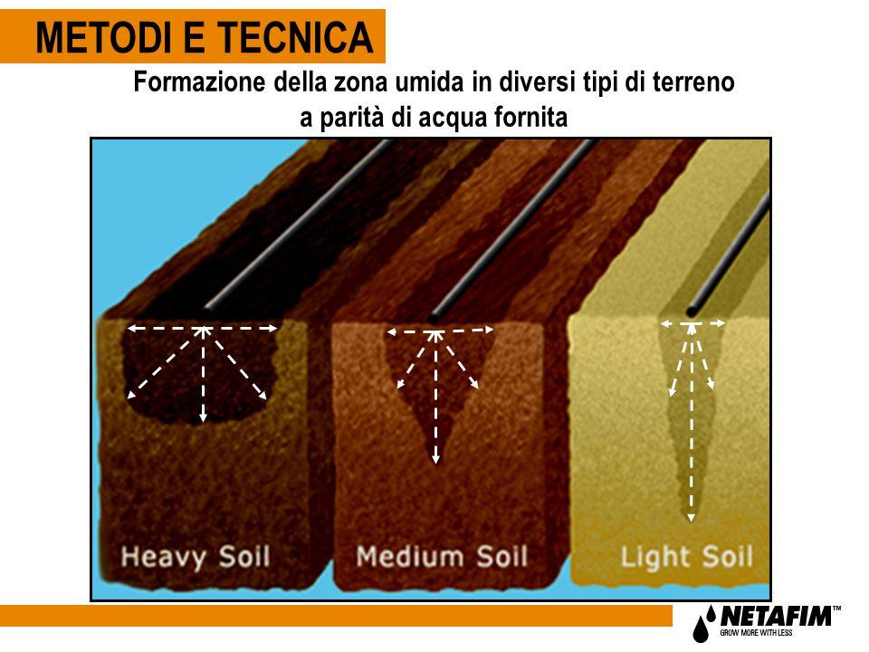 Formazione della zona umida in diversi tipi di terreno a parità di acqua fornita METODI E TECNICA