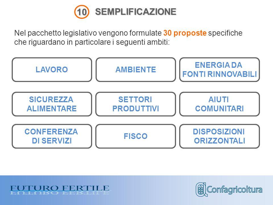 SEMPLIFICAZIONE Nel pacchetto legislativo vengono formulate 30 proposte specifiche che riguardano in particolare i seguenti ambiti: 10 LAVORO AMBIENTE ENERGIA DA FONTI RINNOVABILI SICUREZZA ALIMENTARE AIUTI COMUNITARI CONFERENZA DI SERVIZI FISCO DISPOSIZIONI ORIZZONTALI SETTORI PRODUTTIVI