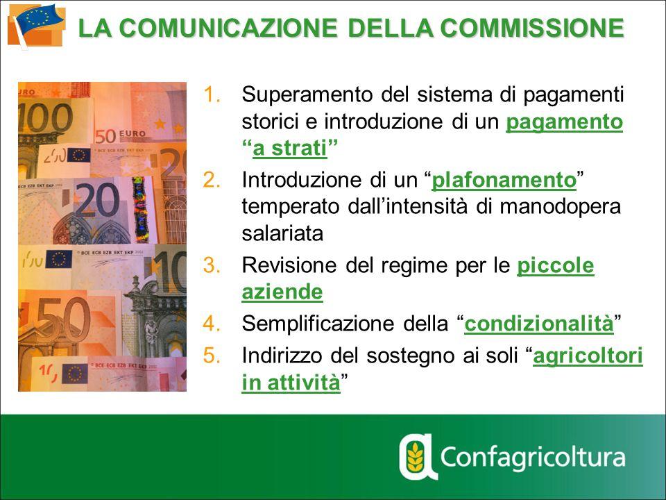 1.Superamento del sistema di pagamenti storici e introduzione di un pagamentoa strati 2.Introduzione di un plafonamento temperato dallintensità di man