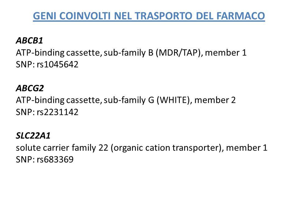 GENI COINVOLTI NEL TRASPORTO DEL FARMACO ABCB1 ATP-binding cassette, sub-family B (MDR/TAP), member 1 SNP: rs1045642 ABCG2 ATP-binding cassette, sub-f