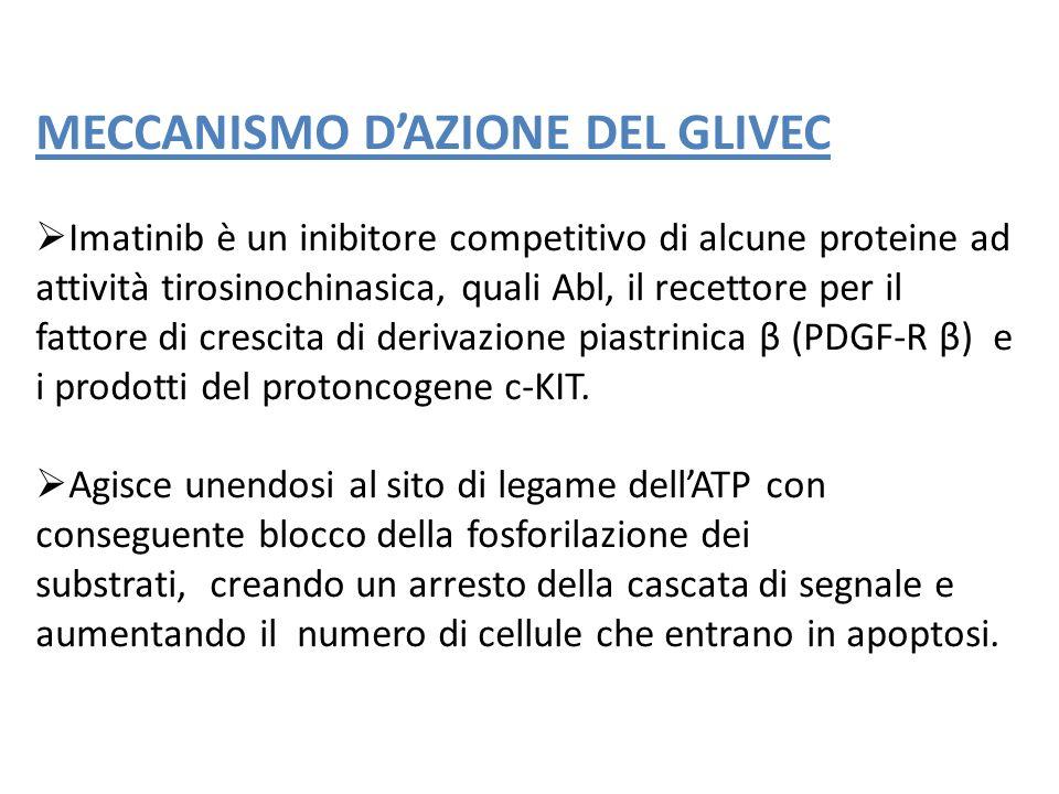 MECCANISMO DAZIONE DEL GLIVEC Imatinib è un inibitore competitivo di alcune proteine ad attività tirosinochinasica, quali Abl, il recettore per il fat