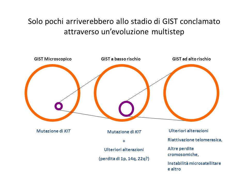 Solo pochi arriverebbero allo stadio di GIST conclamato attraverso unevoluzione multistep GIST MicroscopicoGIST a basso rischioGIST ad alto rischio Mu