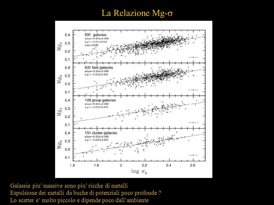 La Relazione Mg- Galassie piu massive sono piu ricche di metalli Espulsione dei metalli da buche di potenziali poco profonde ? Lo scatter e molto picc