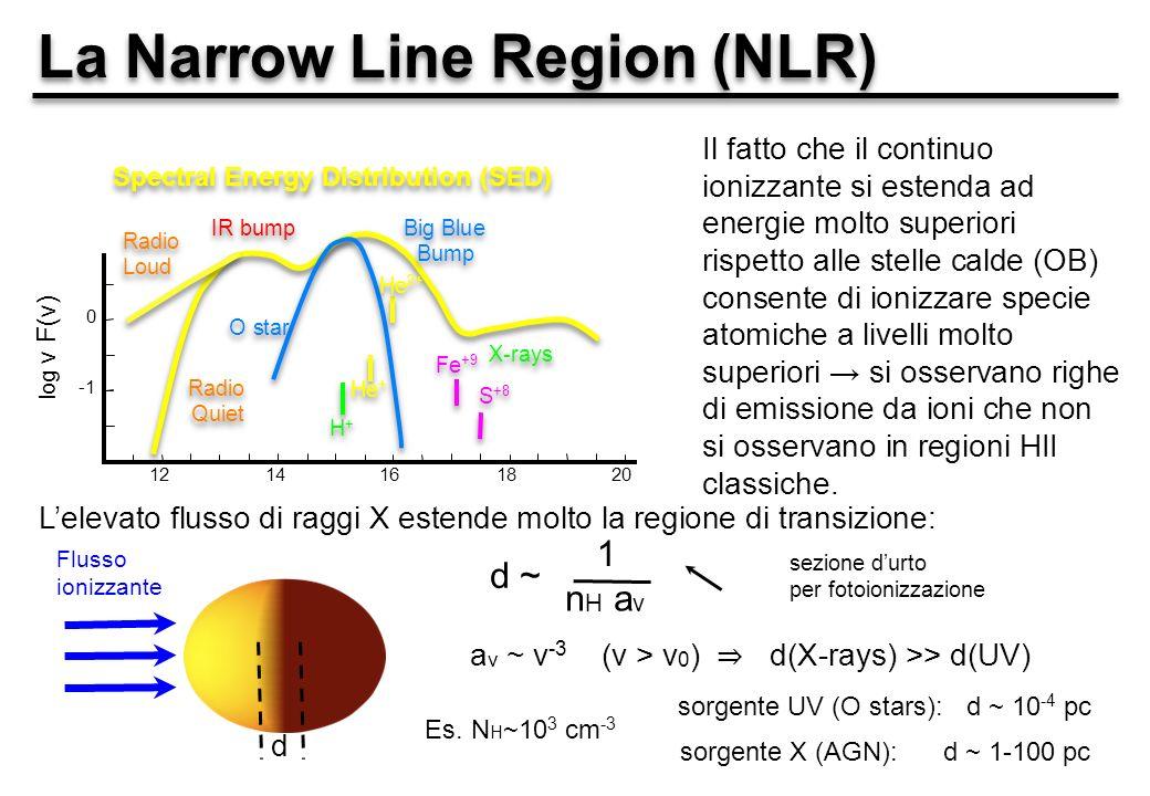 La Narrow Line Region (NLR) 1214161820 0 log ν F(ν) Big Blue Bump Big Blue Bump IR bump X-rays Spectral Energy Distribution (SED) Radio Quiet Radio Loud O star H+H+ H+H+ He + He 2+ Fe +9 S +8 Il fatto che il continuo ionizzante si estenda ad energie molto superiori rispetto alle stelle calde (OB) consente di ionizzare specie atomiche a livelli molto superiori si osservano righe di emissione da ioni che non si osservano in regioni HII classiche.