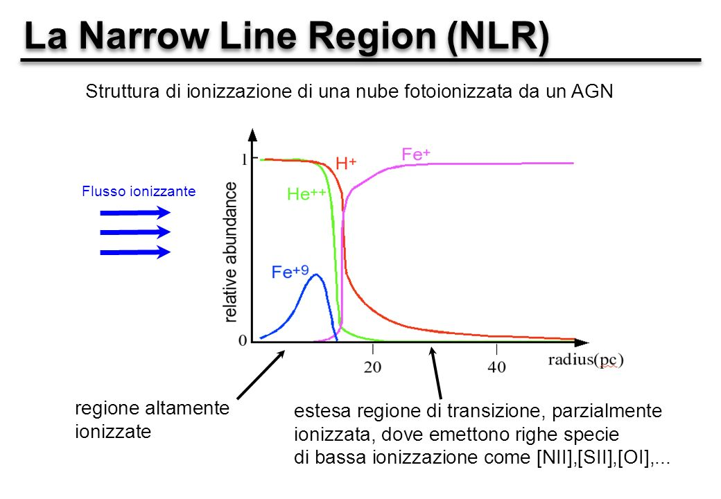 La Narrow Line Region (NLR) Flusso ionizzante Struttura di ionizzazione di una nube fotoionizzata da un AGN regione altamente ionizzate estesa regione di transizione, parzialmente ionizzata, dove emettono righe specie di bassa ionizzazione come [NII],[SII],[OI],...